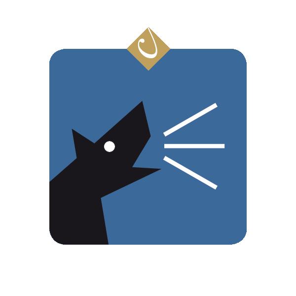 misdaad in kaart app - charm mettrop grafische vormgeving